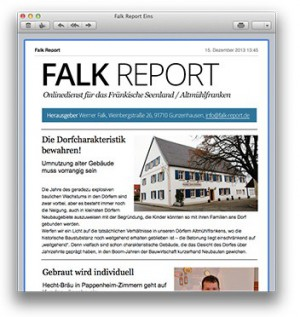 bsp-fenster-falkreport